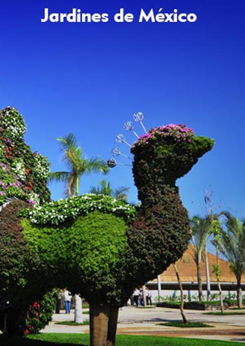 Jardines De Mexico En Morelos